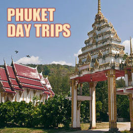 phuket daytrips button